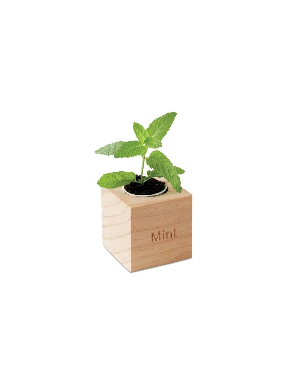 Plantes personnalisables