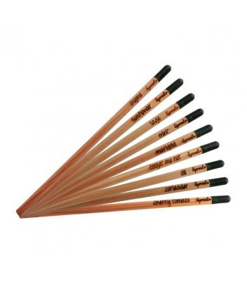 Crayon à graines